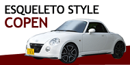 banner_small_copen.png